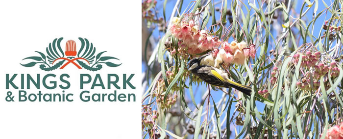 Kings Park and Botanic Garden | Open